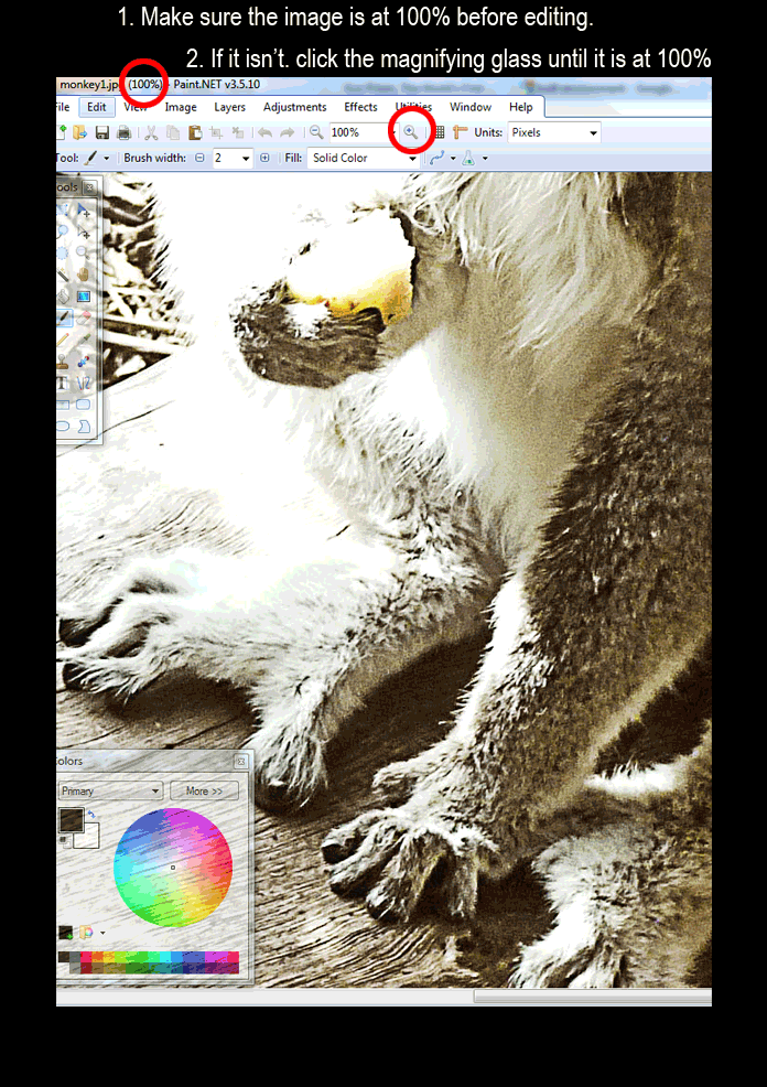How to Resize Images For The Web - Paint.net & Picasa