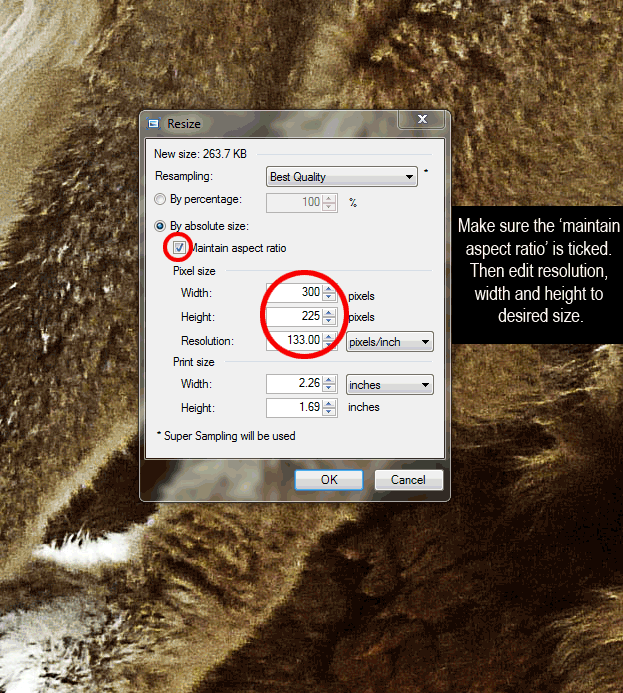 editing images in paint.net
