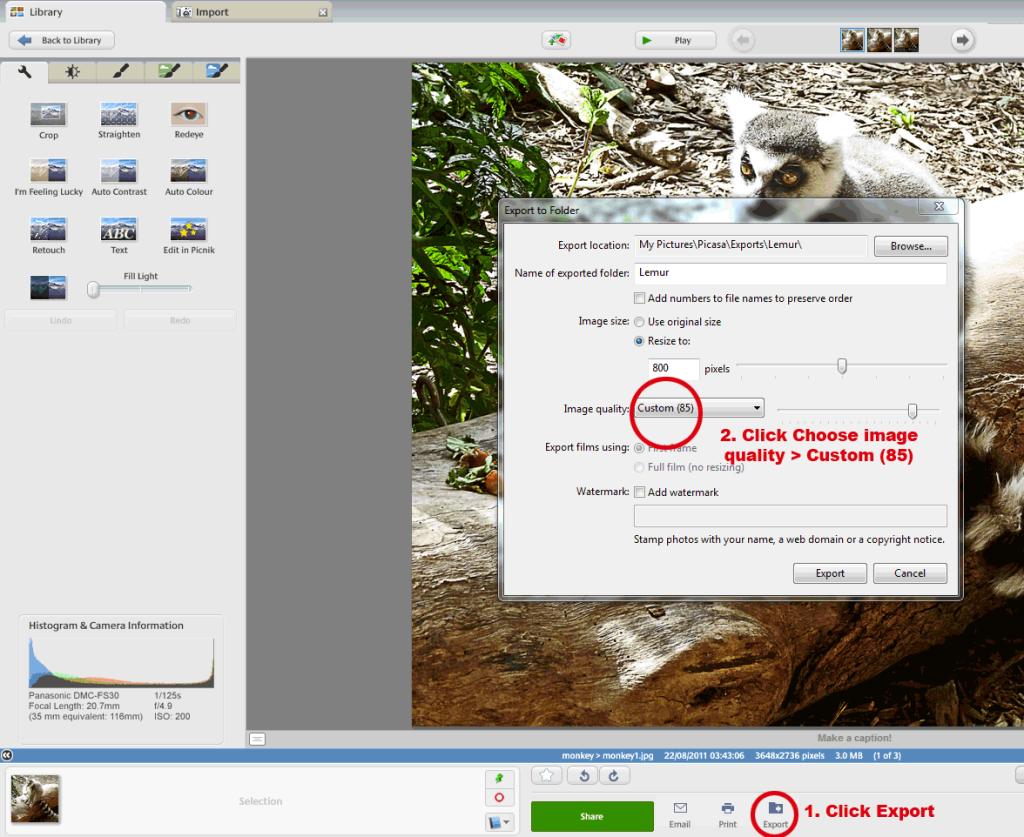 Using picasa to edit images