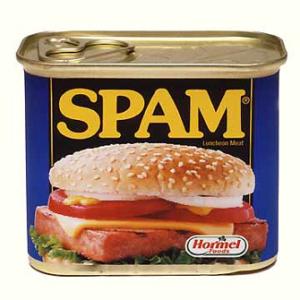 WordPress Spam