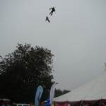 Flying monkeys photo