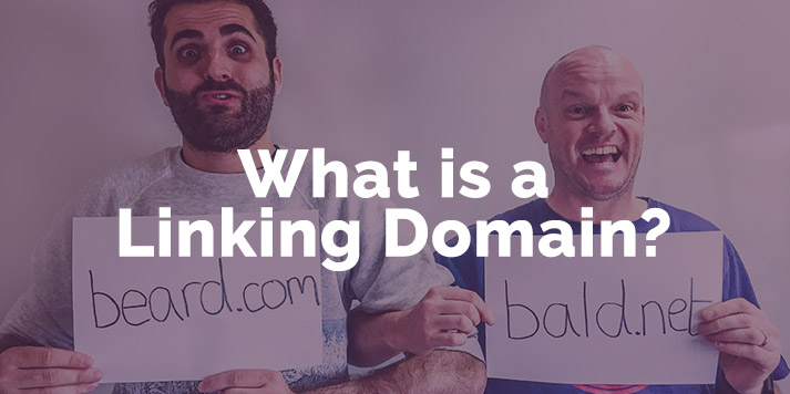 featured image for what is a linking domain blog post