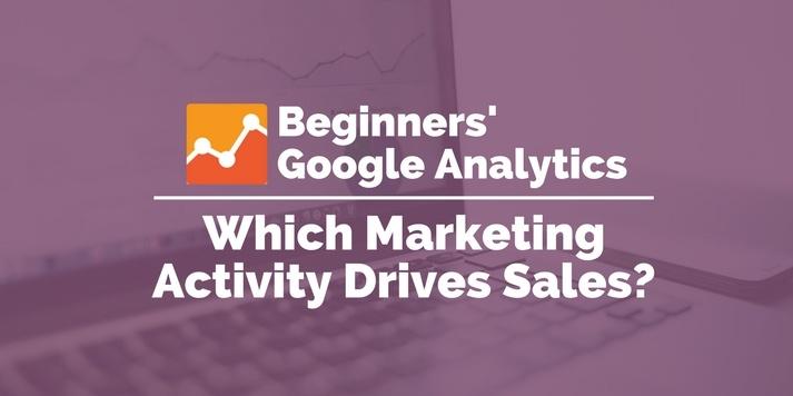 which marketing activity drives sales google analytics