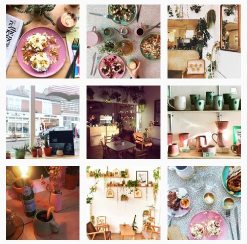 Albatross Cafe Instagram Feed