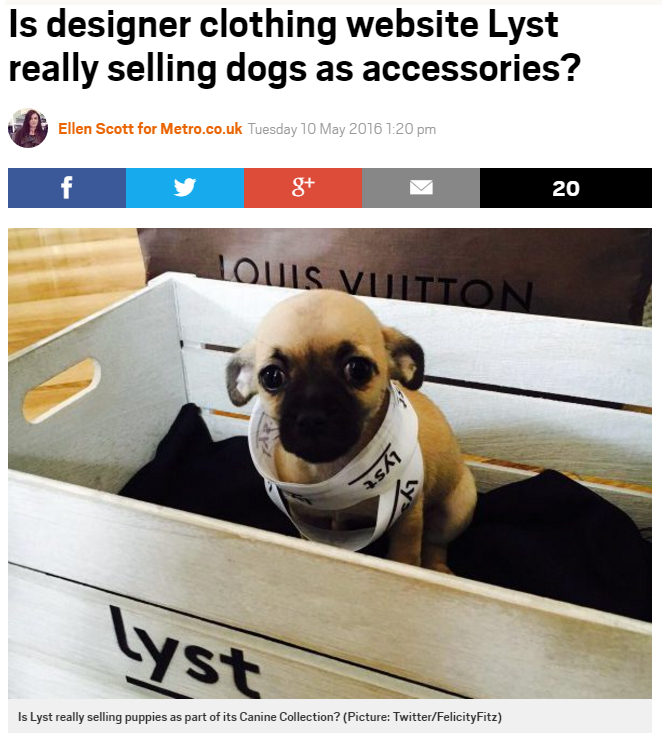 screenshot of headline about lyst designer dogs