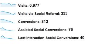 Analytics social visitors