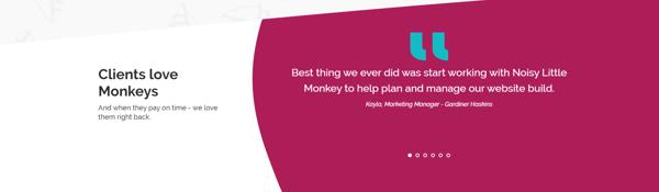 Noisy Little Monkey Client Testimonial