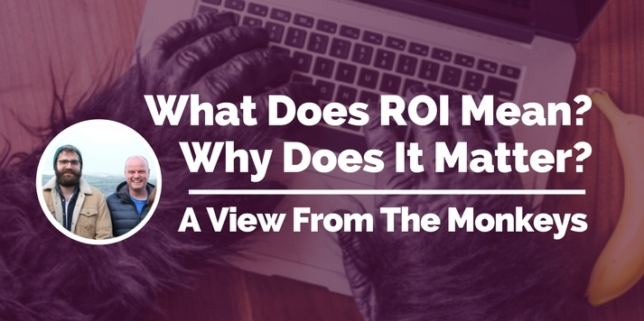 What Does ROI Mean? Why Does It Matter? A View From The Monkeys